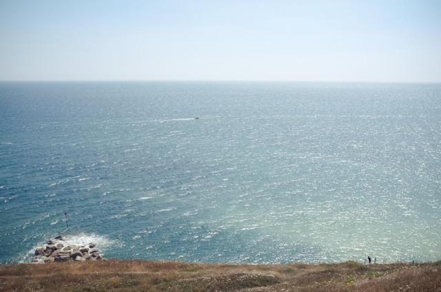 Dorset Blog-20