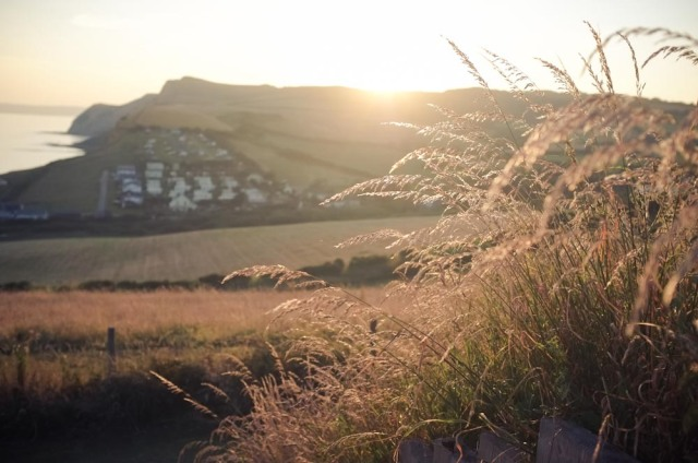 Dorset Blog-2