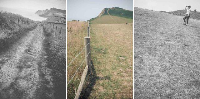 Dorset Blog-23b