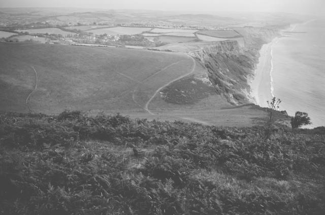 Dorset Blog-28