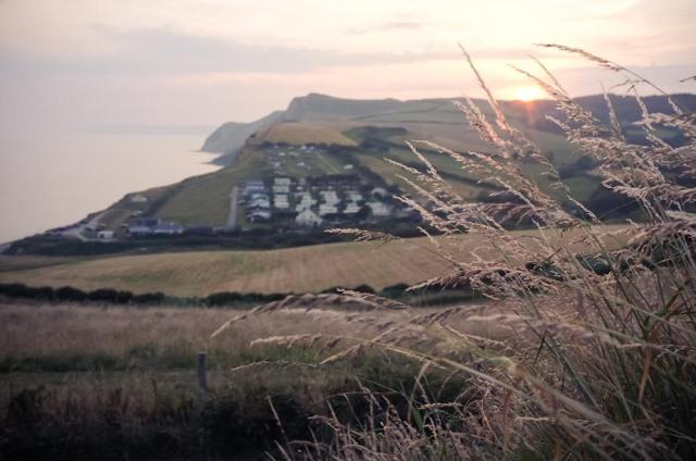 Dorset Blog-35