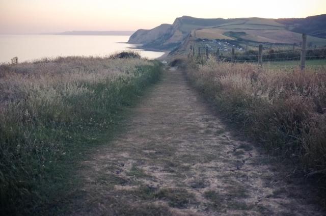 Dorset Blog-8